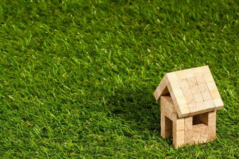 picture of green grass and small wooden house